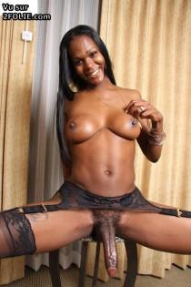 Ces trans blacks sont montés comme des ânes et ne s'en font pas ...: http://www.2folie.com/tag/trans-black/