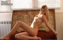 cette-blonde-sexy-pose-dans-une-malle--2016128-7.jpg